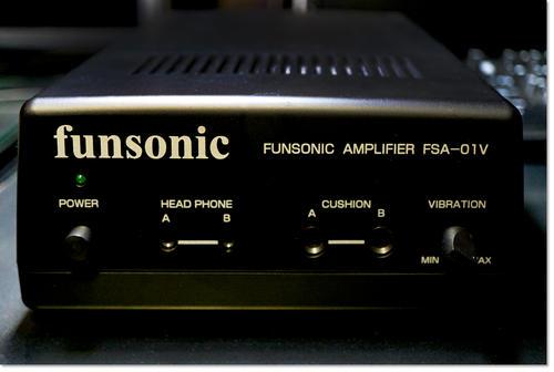 funsonicamp.jpg