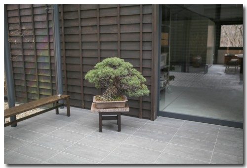 0109muragenashiya19.jpg