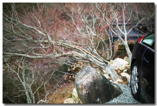 0109muragenashiya28.jpg