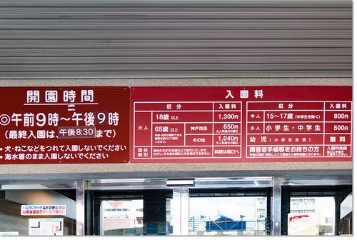 0117sumaAqua04.jpg