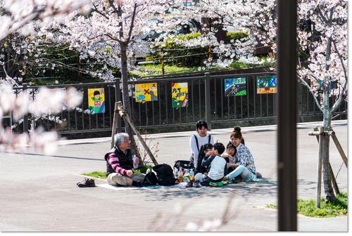 0328sakura08.jpg