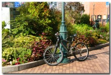 bycycleB.jpg