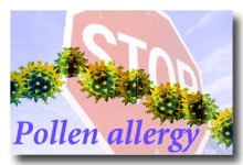 pollenAllergy01B.jpg