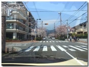 0409ashiya01.jpg