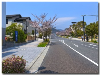 0409ashiya02.jpg