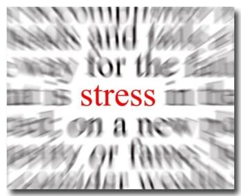 stress20120312.jpg