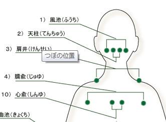 tsuboMapBack.jpg