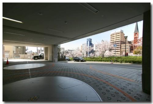 0402sakura01.jpg
