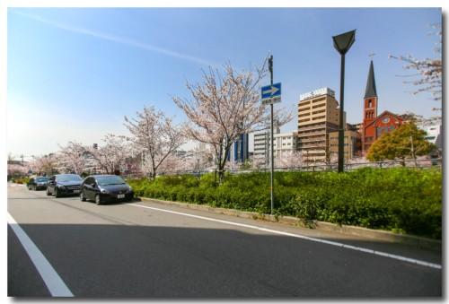 0402sakura02.jpg