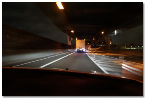 sakura-nightview03.jpg