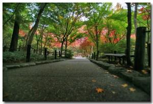 zuihoujipark07B.jpg