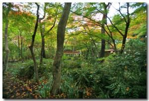 zuihoujipark08B.jpg