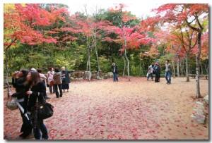 zuihoujipark15B.jpg