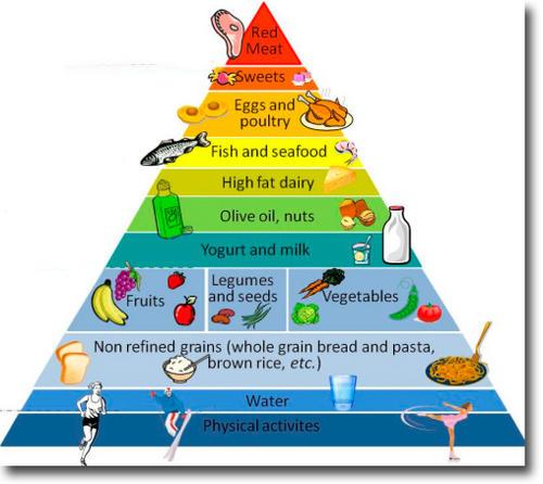 foodspyramid.jpg