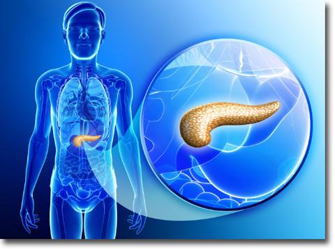 膵臓ガンとクエン酸