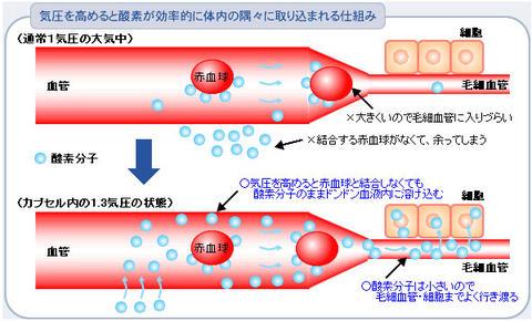 酸素カプセルは何故効くのか?