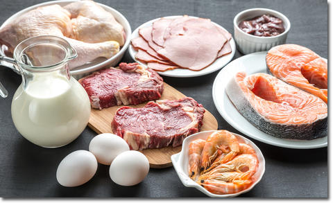 なぜタンパク質が大事なのか?