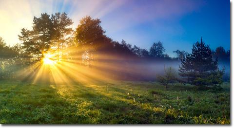 太陽光とドーパミン