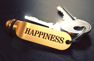 磁力線と幸福感