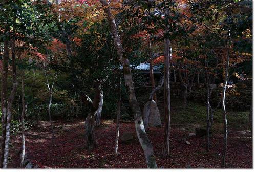 1108zuihouji22.jpg